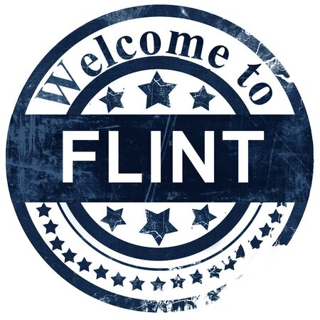 flint: flint stamp on white background