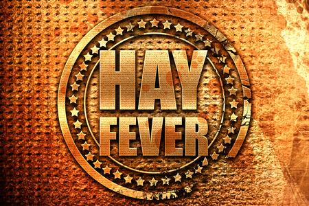 hayfever: hayfever, 3D rendering, grunge metal text Stock Photo