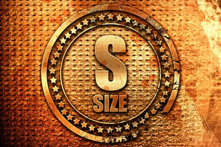 s size, 3D rendering, grunge metal text