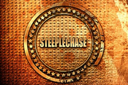 Steeplechase sign background with some soft smooth lines, 3D rendering, grunge metal text Stock Photo