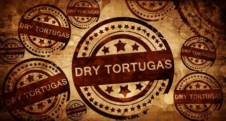 dry tortugas: Dry tortugas, vintage stamp on paper background