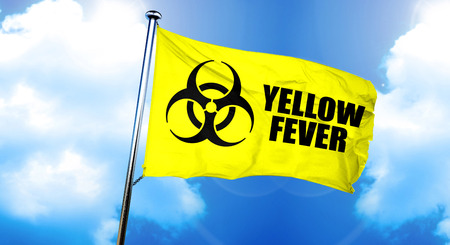 Yellow fever flag, 3D rendering