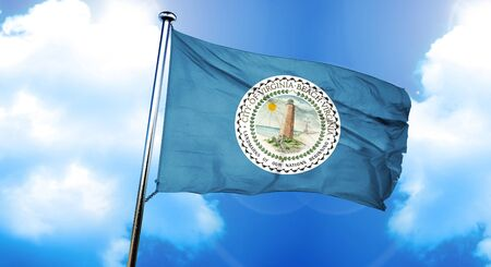 Virginia beach flag, 3D rendering