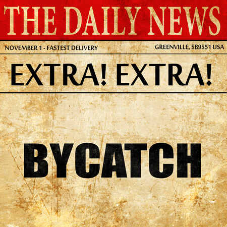 bycatch, newspaper article text