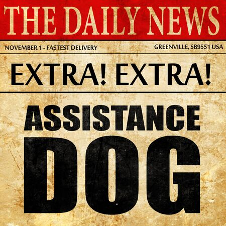 sightless: assistance dog, newspaper article text Stock Photo