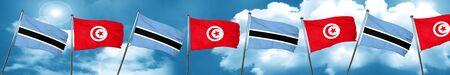 botswana: Botswana flag with Tunisia flag, 3D rendering