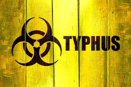 typhus: Vintage Typhus on a grunge wooden panel Stock Photo