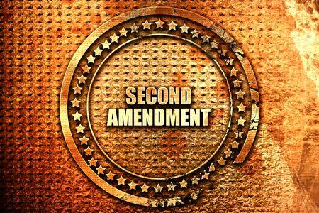 amendment: second amendment, 3D rendering, text on metal