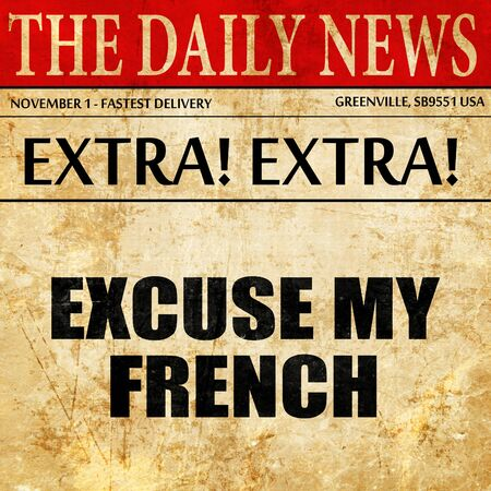 excuse: excuse my french, article text in newspaper