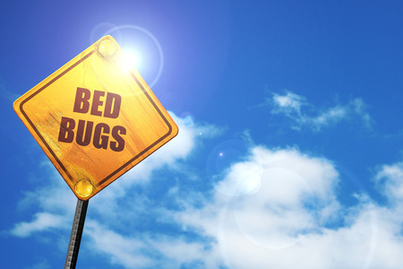 bed bugs, 3D rendering, traffic sign Stock Photo