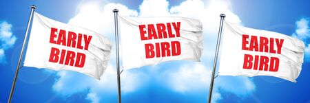 early bird, 3D rendering, triple flags Standard-Bild
