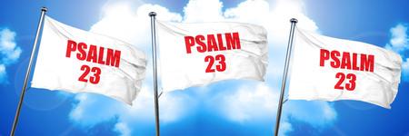 psalm: psalm 23, 3D rendering, triple flags