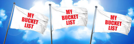 my bucket list, 3D rendering, triple flags