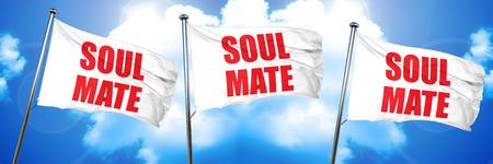 soulmate: soulmate, 3D rendering, triple flags