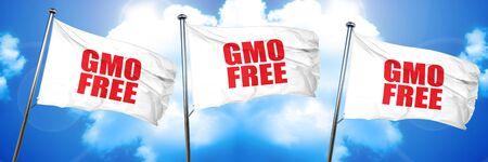 genetically modified organisms: gmo free, 3D rendering, triple flags Stock Photo