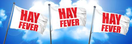 hayfever, 3D rendering, triple flags
