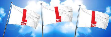 l size, 3D rendering, triple flags