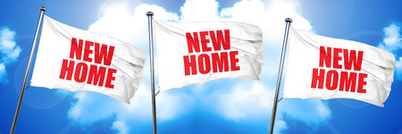 new home, 3D rendering, triple flags Imagens