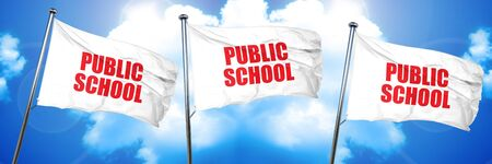 public school, 3D rendering, triple flags