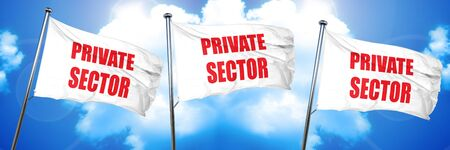 private domain: private sector, 3D rendering, triple flags