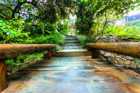 the beautiful woodenwalk way winding in a garden