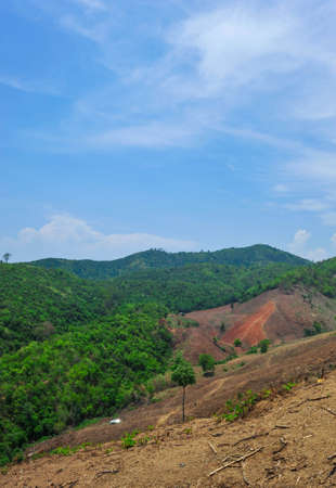deforested: Deforested mountain