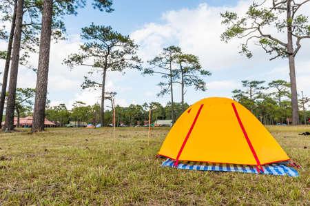 phukradueng: Tent in Phukradueng National Park