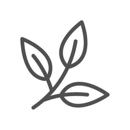 Icon sprigs of tea. Eco food symbol. Leaf of olive, mint. Linear style icon. Flat design element. Editable stroke.