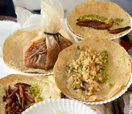 gusanos: Insectos y gusanos tacos fritos de la cocina mexicana