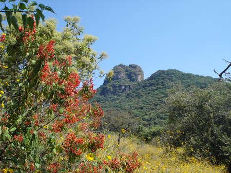 morelos: Landscape in rural town in Morelos, Mexico