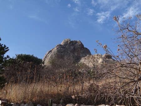 mexico cactus: Bernal peak monolith in Queretaro, Mexico