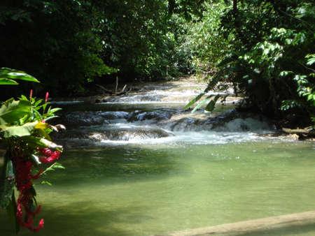 チアパス州, メキシコのラカンドン ジャングルを流れる川