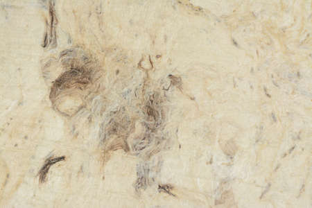 fibrous: Recicled paper background