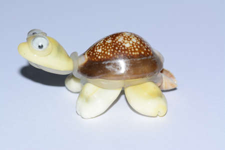 folkloristic: Mexican ethnic turtle artcraft made with seashells