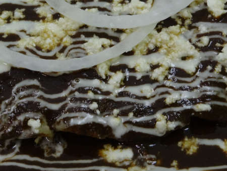 Mole enchiladas dish close up, mexican traditional food