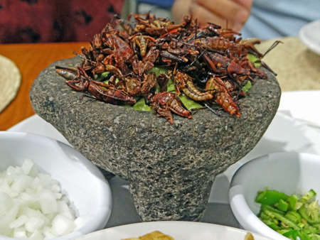 Fried crickets and guacamole on molcajete Stock Photo