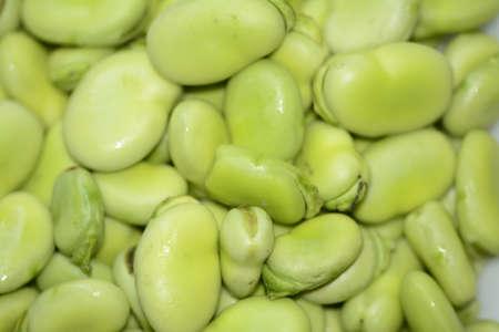 Fava bean close up
