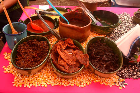 Jerky beef and spicy sauces for making Tlayuda in Mexico 版權商用圖片