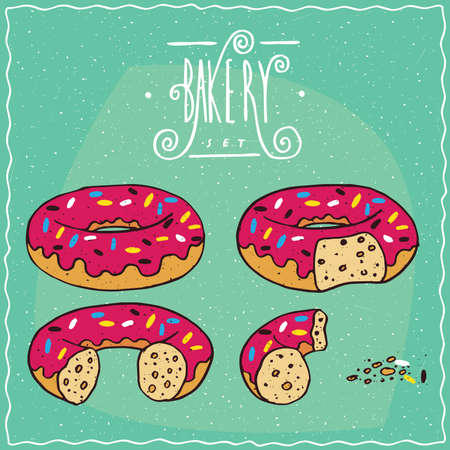 one piece: Set of pink glazed donuts in different stages of eating, New, One bite, Part of donut, One piece with crumbs. Ornate lettering bakery. Handmade cartoon style