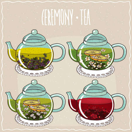 brewed: Set of different brewed herbal teas, with thyme, jasmine, chamomile, hibiscus. Beige background and ornate lettering Ceremony tea. Handmade cartoon style