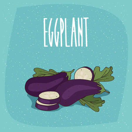 Ripe vegetable fruits aubergine, whole and beautifully cut into pieces. Visible flesh and seeds. Isolated blue background. Realistic hand draw style. Lettering Eggplant