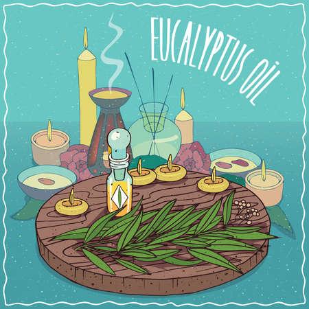 유칼립투스 오일과 유칼립투스 식물의 잎의 유리 Flacon. 디퓨저의 향기 에센셜 오일. 아로마 테라피 용 천연 식물성 기름