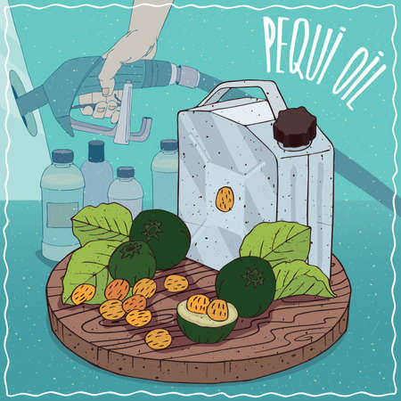 filling station: Metal Jerrycan of Pequi oil and fruits and seeds of Caryocar brasiliense plant. Filling at gas petrol station. Natural vegetable oil used for fuel production Illustration