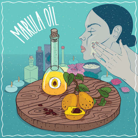 decanter: Glass Decanter of Marula oil and fruits of Sclerocarya birrea plant. Girl applying facial mask on face. Natural vegetable oil used for skin care Illustration