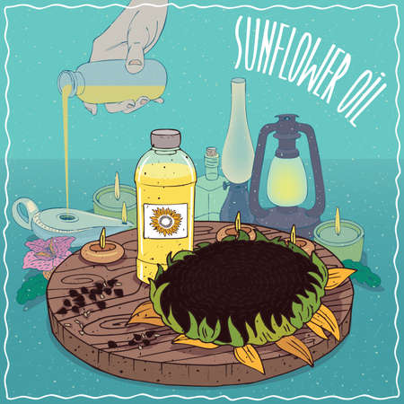 illuminator: Plastic Bottle of Sunflower oil and disk of Helianthus plant. Hand filling ancient oil lamp. Natural vegetable oil used as fuel for oil lamp Illustration