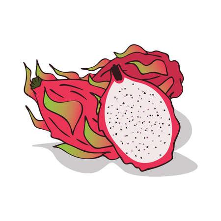 Isolated ripe pitaya or pitahaya Vector illustration.