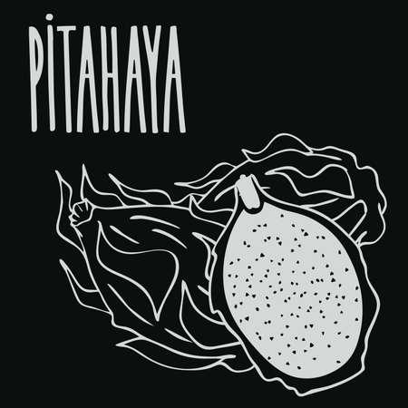 Chalkboard ripe pitaya or pitahaya Illustration