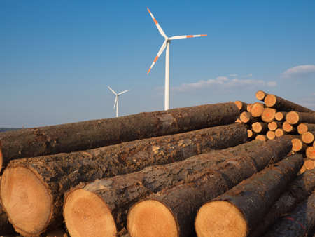 woodcutting: Stacked sawed pine logs with a wind turbine in the background Stock Photo