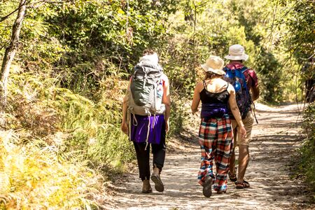 3 GOOD friend hiking and trekking in the green forest