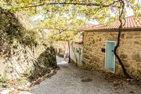 very beautifull photo of a street in a traditional village